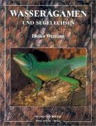Cover-Bild zu Wasseragamen & Segelechsen von Werning, Heiko