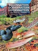 Cover-Bild zu Bullennattern, Gophernattern und Kiefernnattern von Hirschkorn, Dieter