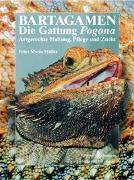 Cover-Bild zu Bartagamen von Müller, Peter Maria