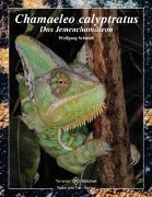 Cover-Bild zu Chamaeleo Calyptratus von Schmidt, Wolfgang