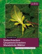 Cover-Bild zu Stabschrecken, Gespenstschrecken, Wandelnde Blätter von Esch, Alexander