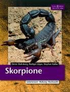 Cover-Bild zu Skorpione von Mahsberg, Dieter