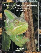 Cover-Bild zu Chamaeleo calyptratus (eBook) von Schmidt, Wolfgang