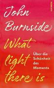 Cover-Bild zu What light there is von Burnside, John