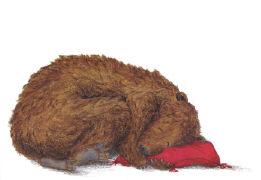 Cover-Bild zu Bärenschlaf von Schärer, Kathrin (Illustr.)