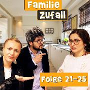 Cover-Bild zu Folge 21-25 (Audio Download)