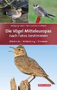 Cover-Bild zu Die Vögel Mitteleuropas von Fiedler, Wolfgang