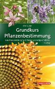 Cover-Bild zu Grundkurs Pflanzenbestimmung von Lüder, Rita