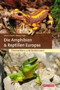 Cover-Bild zu Die Amphibien & Reptilien Europas von Glandt, Dieter