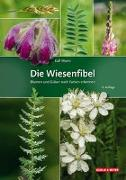 Cover-Bild zu Die Wiesenfibel von Worm, Ralf