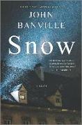 Cover-Bild zu Banville, John: Snow