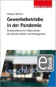 Cover-Bild zu Gewerbebetriebe in der Pandemie (eBook) von Hofmann, Christian