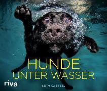 Cover-Bild zu Hunde unter Wasser
