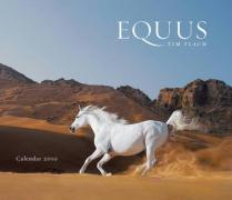Cover-Bild zu Equus 2010