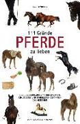 Cover-Bild zu 111 Gründe, Pferde zu lieben