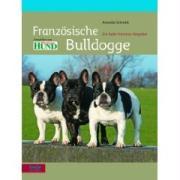 Cover-Bild zu Französische Bulldogge