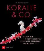 Cover-Bild zu Koralle & Co von Smith, Dr. Richard