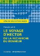 Cover-Bild zu Le Voyage d'Hector ou la recherche du bonheur von François Lelord. Textanalyse und Interpretation mit ausführlicher Inhaltsangabe und Abituraufgaben mit Lösungen (eBook) von Lelord, François