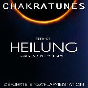 Cover-Bild zu Kempermann, Raphael: Geführte Einschlafmeditation <pipe> Erfahre Heilung während Du schläfst (Audio Download)
