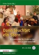 Cover-Bild zu Dann leuchtet ein Stern von Schulz, Esther (Hrsg.)