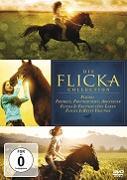 Cover-Bild zu Flicka 1-3 von Michael Mayer, Michael Damian (Reg.)