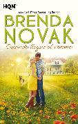 Cover-Bild zu Novak, Brenda: Cuando llegue el verano (eBook)