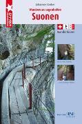 Cover-Bild zu Wandern an sagenhaften Suonenwanderungen