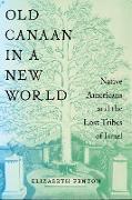 Cover-Bild zu Old Canaan in a New World (eBook) von Fenton, Elizabeth
