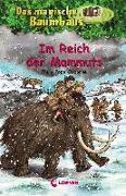 Cover-Bild zu Das magische Baumhaus 7 - Im Reich der Mammuts