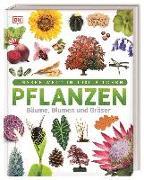 Cover-Bild zu Pflanzen von Jose, Sarah