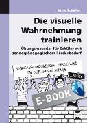 Cover-Bild zu Die visuelle Wahrnehmung trainieren (eBook) von Schäfer, Julia
