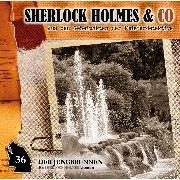 Cover-Bild zu Sherlock Holmes & Co, Folge 36: Der Jungbrunnen, Episode 1 (Audio Download) von Topf, Markus