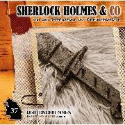 Cover-Bild zu Sherlock Holmes & Co, Folge 37: Der Jungbrunnen, Episode 2 (Audio Download) von Topf, Markus
