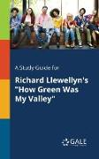 "Cover-Bild zu A Study Guide for Richard Llewellyn's ""How Green Was My Valley"" von Gale, Cengage Learning"