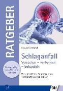 Cover-Bild zu Schlaganfall von Grötzbach, Holger