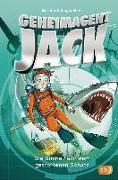Cover-Bild zu Singer Hunt, Elizabeth: Geheimagent Jack - Die Suche nach dem gestohlenen Schatz