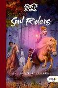 Cover-Bild zu Dahlgren, Helena: Star Stable: Soul Riders 2