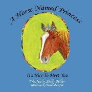 Cover-Bild zu Miller, Holly B.: A Horse Named Princess