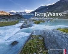 Cover-Bild zu Faszination BergWasser von Gerth, Roland