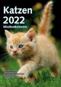 Cover-Bild zu garant Verlag GmbH (Hrsg.): Wochenkalender Katzen 2022