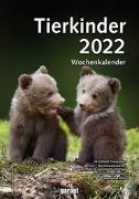 Cover-Bild zu garant Verlag GmbH (Hrsg.): Tierkinder 2022 Wochenkalender