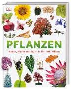 Cover-Bild zu Jose, Dr. Sarah: Pflanzen