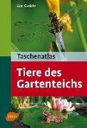 Cover-Bild zu Gutjahr, Axel: Taschenatlas Tiere des Gartenteichs (eBook)