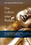Cover-Bild zu Das Gehirn eines Buddha von Hanson, Rick
