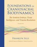 Cover-Bild zu Sills, Franklyn: Foundations in Craniosacral Biodynamics, Volume Two