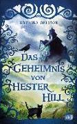 Cover-Bild zu Das Geheimnis von Hester Hill