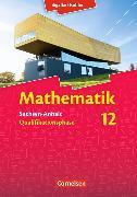 Cover-Bild zu Mathematik 12. Schuljahr. Schülerbuch. ST von Bigalke, Anton