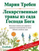 Cover-Bild zu Heilkräuter aus dem Garten Gottes