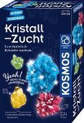 Cover-Bild zu Kristall-Zucht