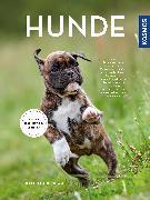 Cover-Bild zu Hunde von Kitchenham, Kate